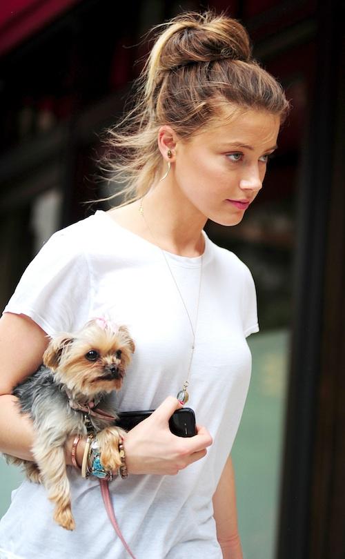 Amber Heard Photoshoots