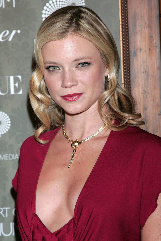 Amy Smart Boobs Images