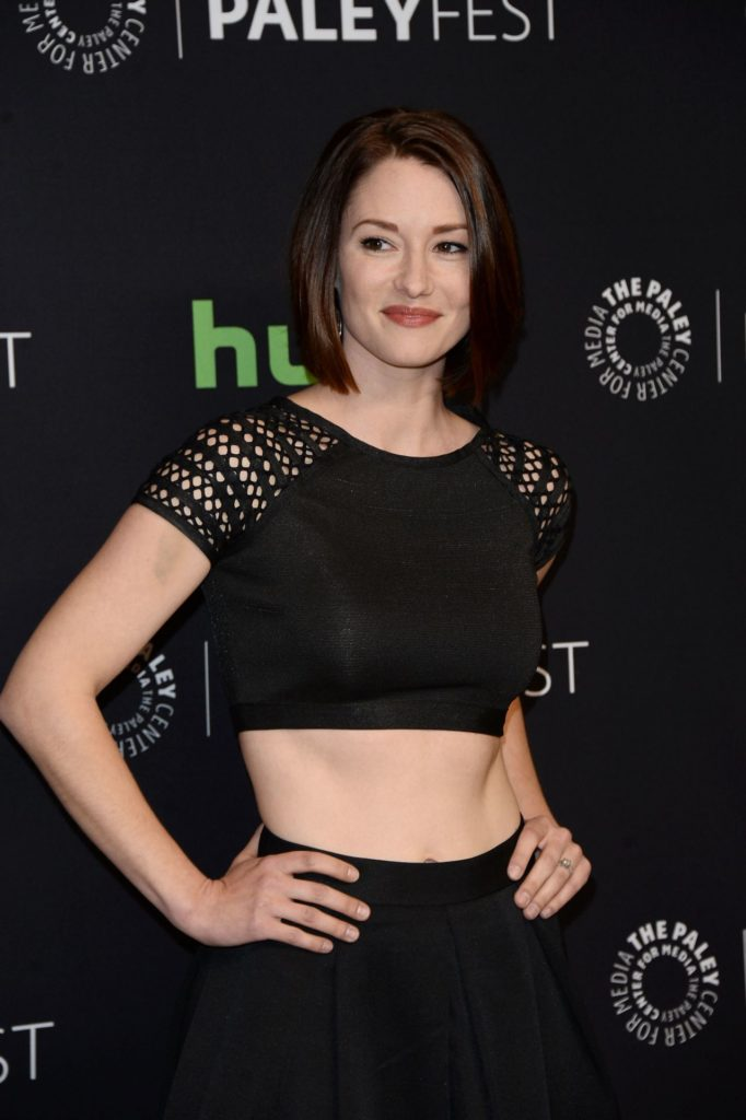 Chyler Leigh Hot Photos