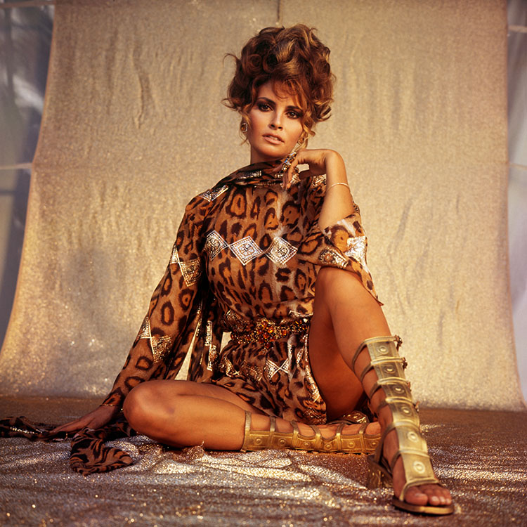 Raquel Welch Oops Moment Images