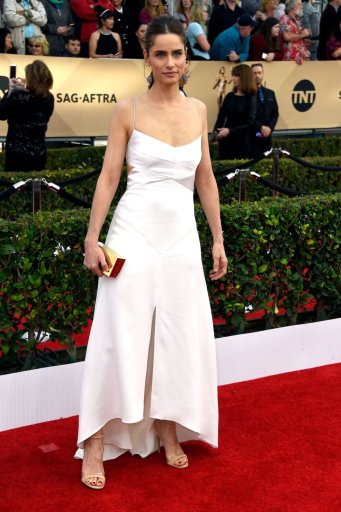 Amanda Peet Sexy Images