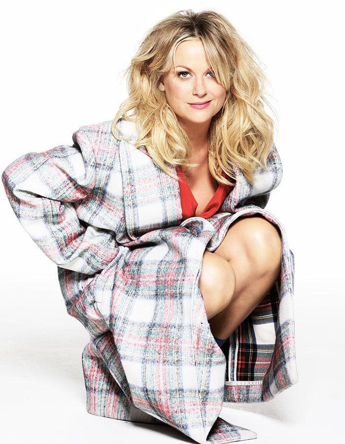 Amy Poehler Lingerie Images