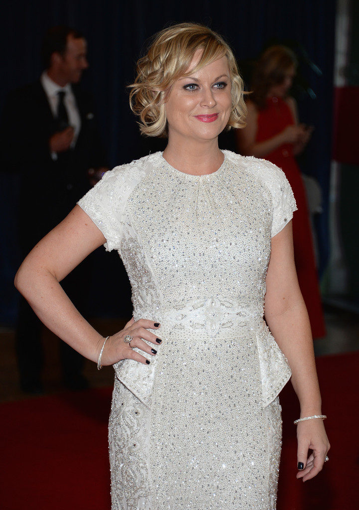 Hot Pictures Of Amy Poehler