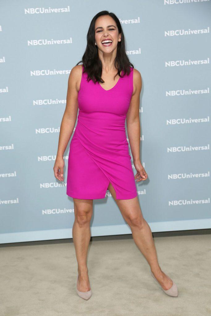 Melissa Fumero Legs Images