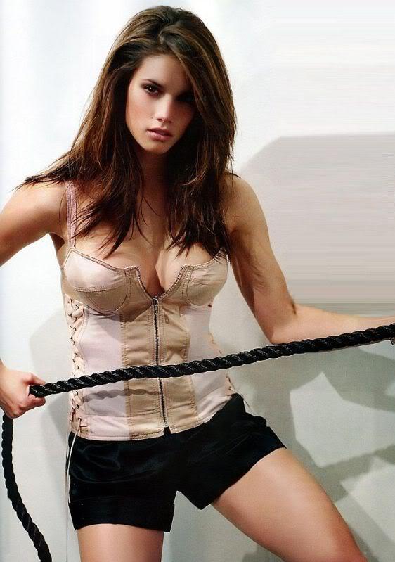 Missy Peregrym In Undergarment Pictures