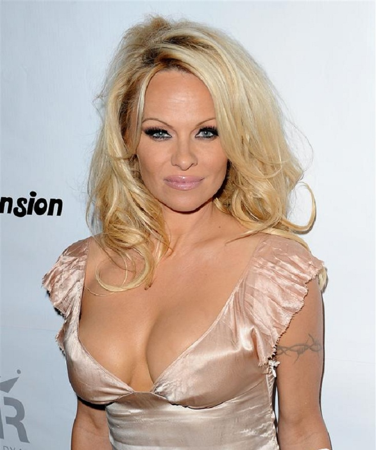 Pamela Anderson Boobs Images
