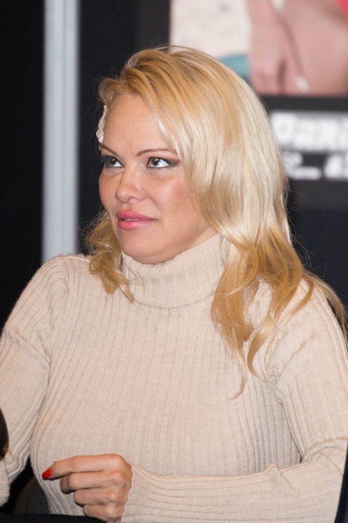 Pamela Anderson Hair Style Photos