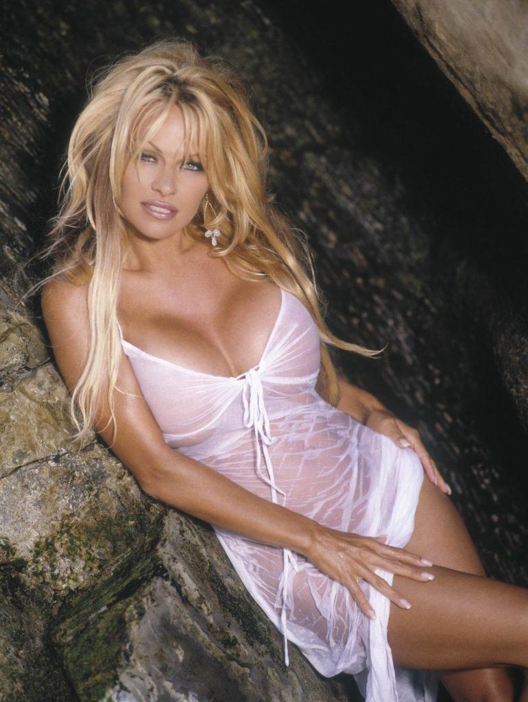 Pamela Anderson In Undergarments Pics